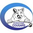 eyestone logo
